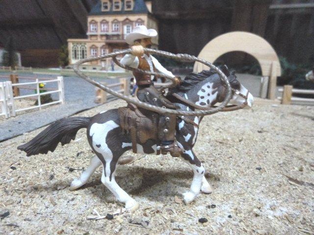 schleich pferde mit reiterin